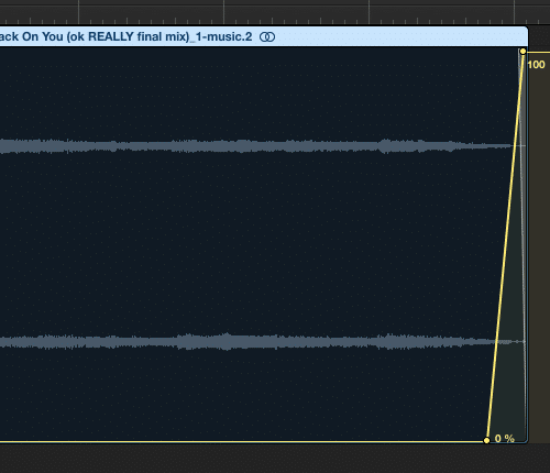 You may not want to increase the reverb's wet function to 100%.  Use your ears to decide what is best.