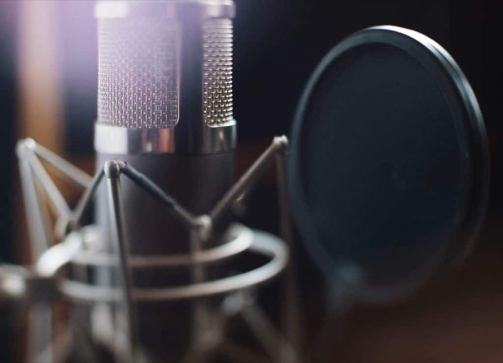 Condenser microphones are great at recording subtle details.
